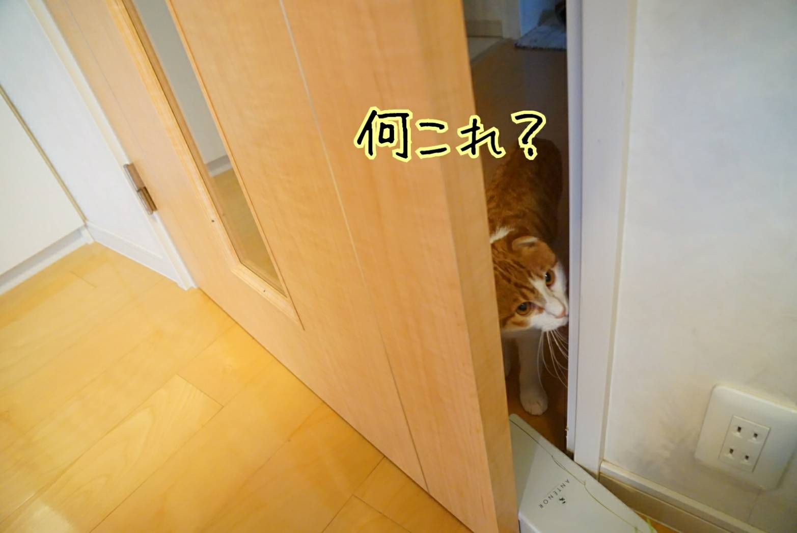 平成最後の日13