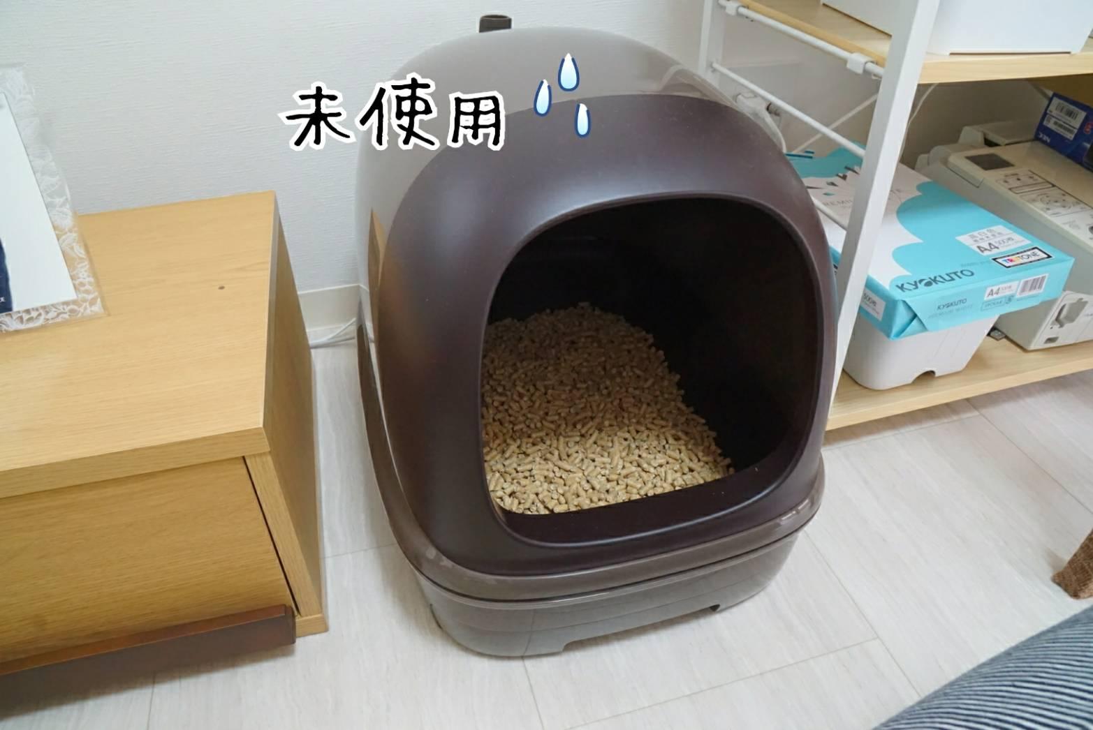 トライアルトイレ問題2
