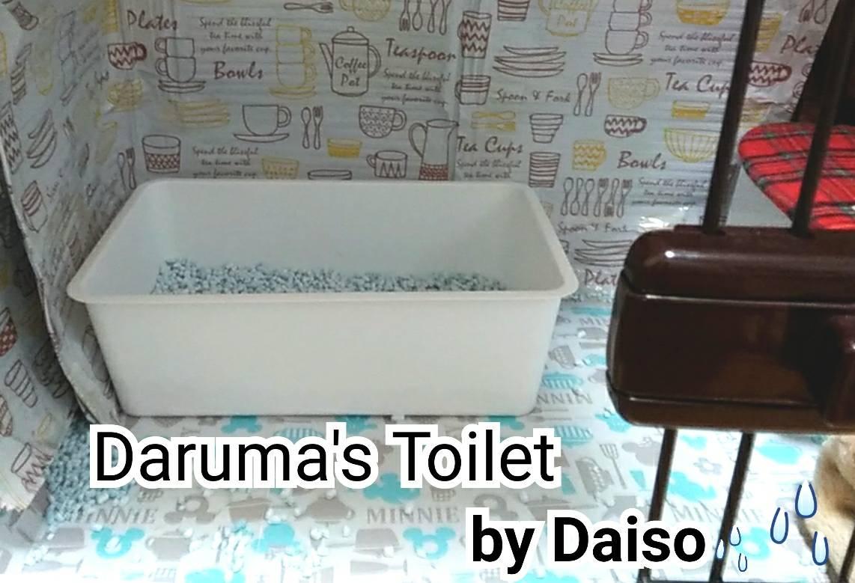 トライアルトイレ問題7