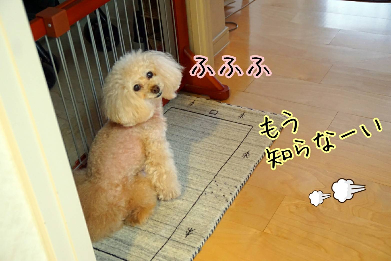 出待ち&キラリ27