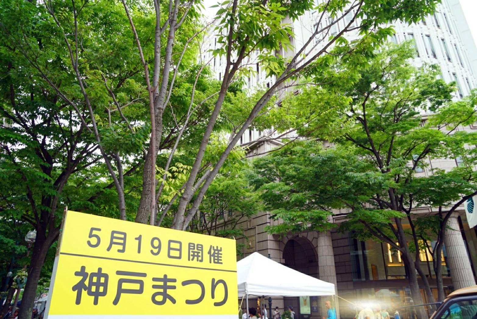 2019神戸祭り11