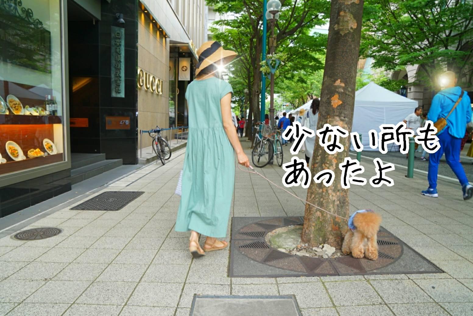 2019神戸祭り17