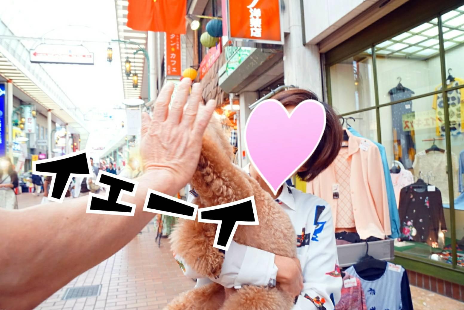 神戸祭りラファ君11