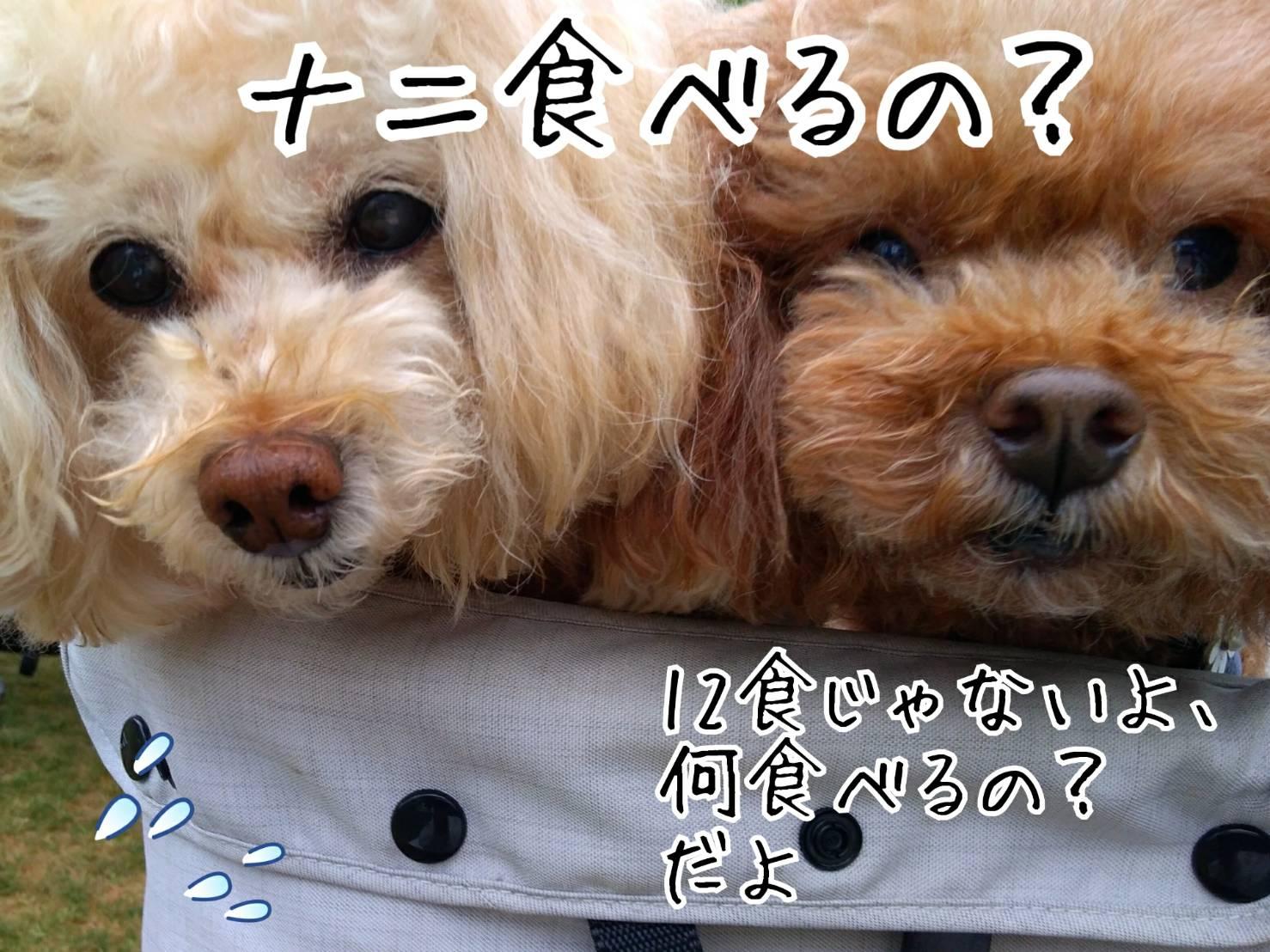 神戸祭り前日14