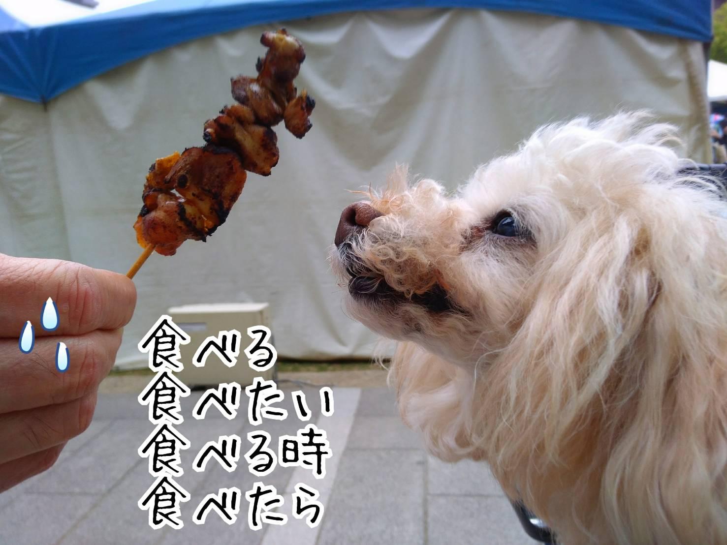 神戸祭り前日16