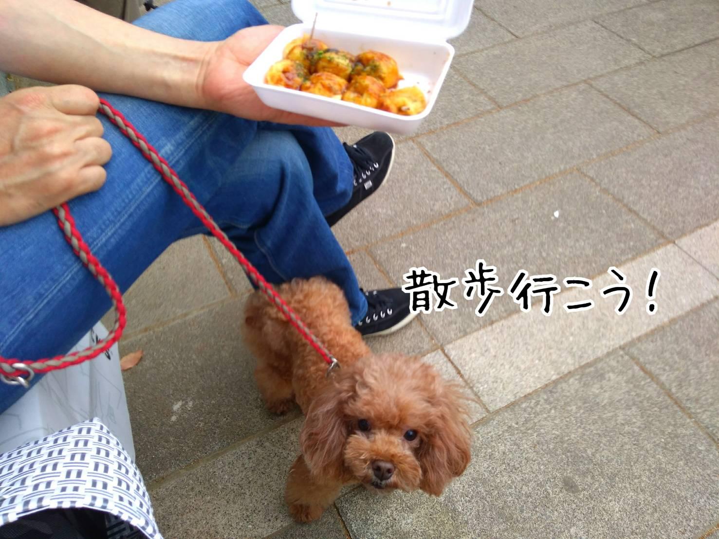 201905神戸祭り前日11