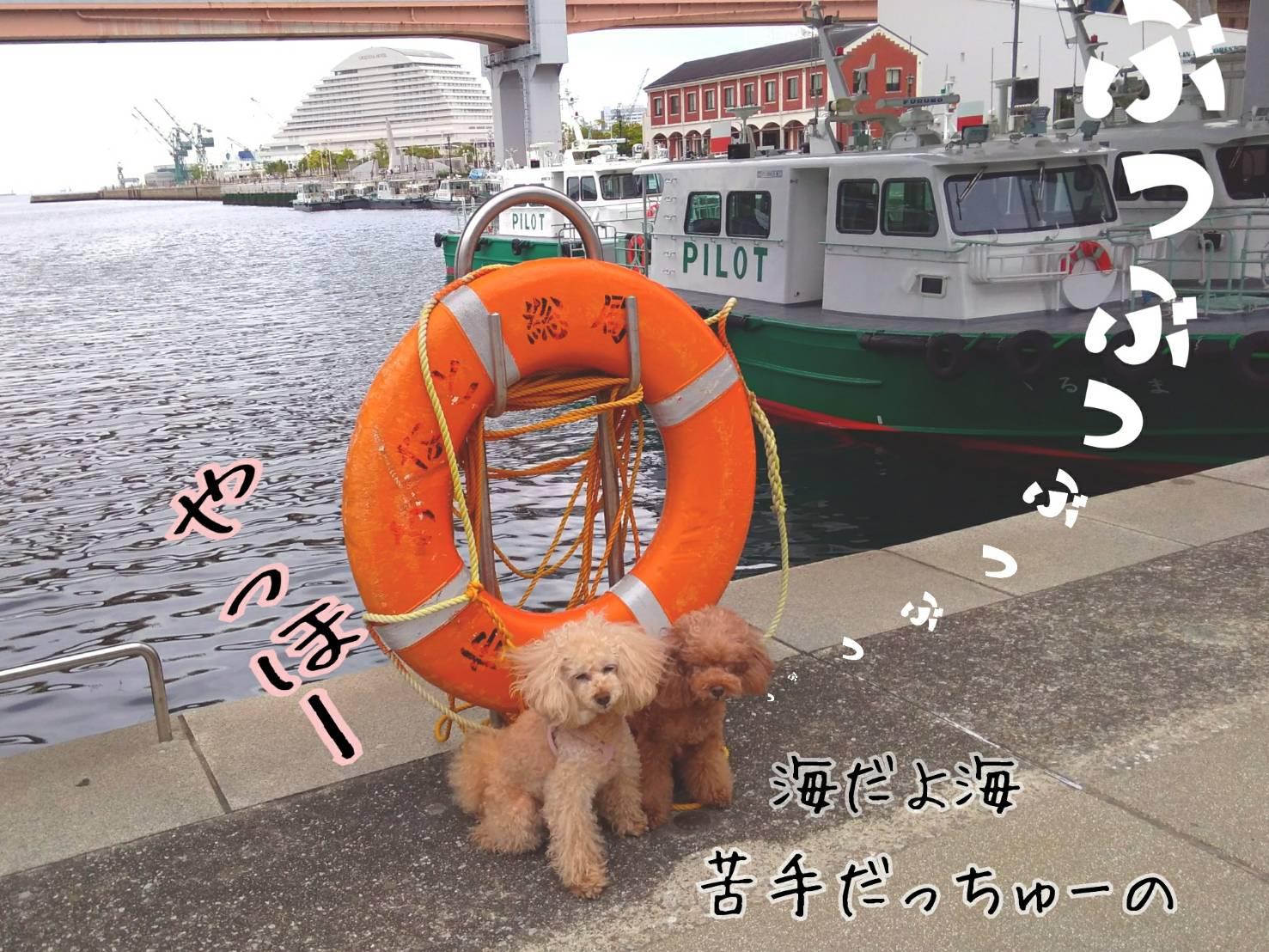 神戸祭り前夜最終回12
