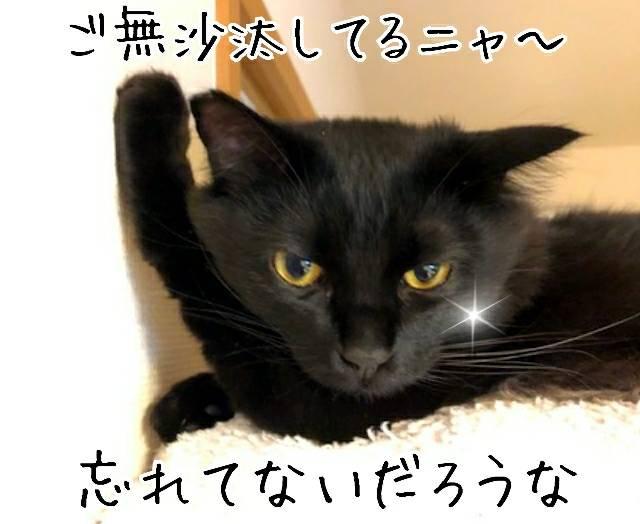 幸せ通信銀マル20190511