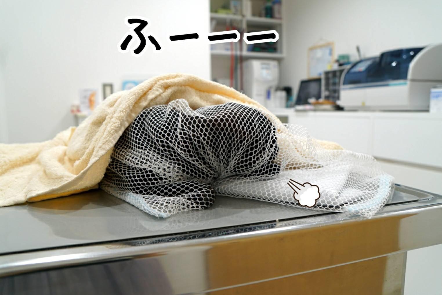 ジジ初病院14