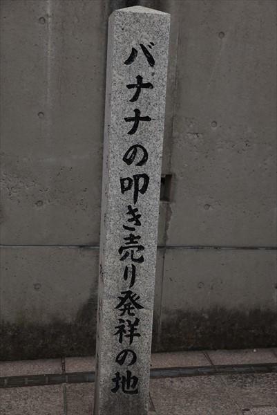 DSC_9083_R.jpg