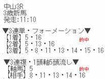 air33_4.jpg