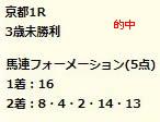 dr511.jpg