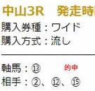 kin46_3.jpg