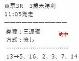 main55_1.jpg