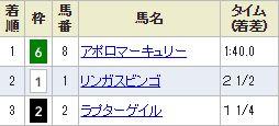tokyo8_421.jpg