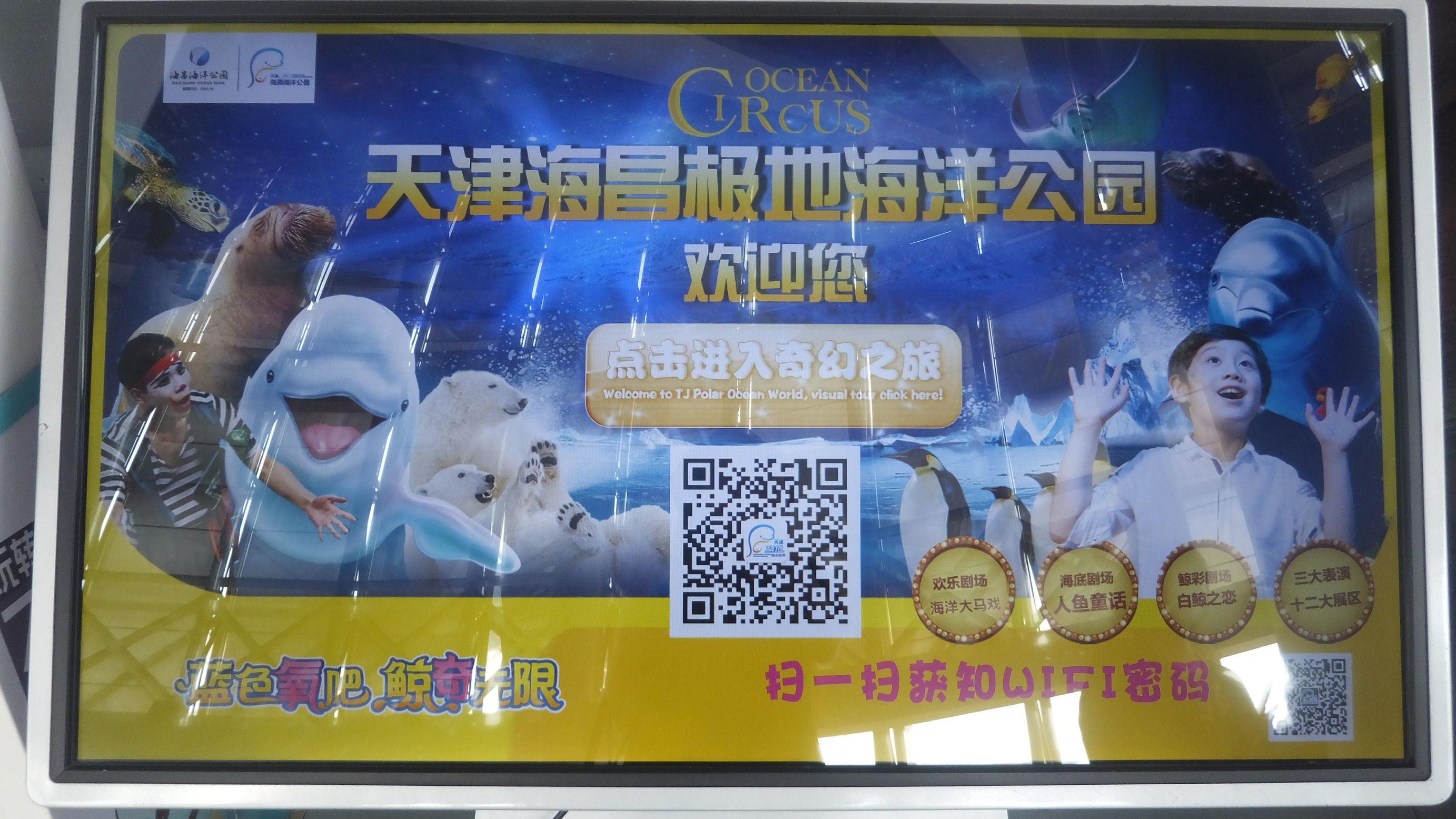 chinaAR48.jpg