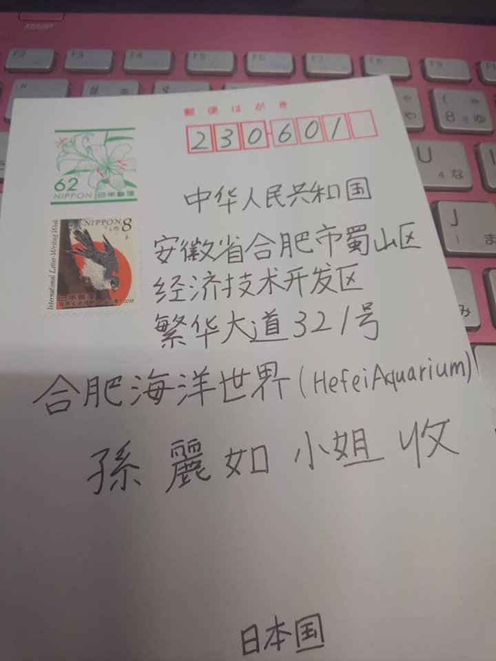 chinairukahagaki51e.jpg
