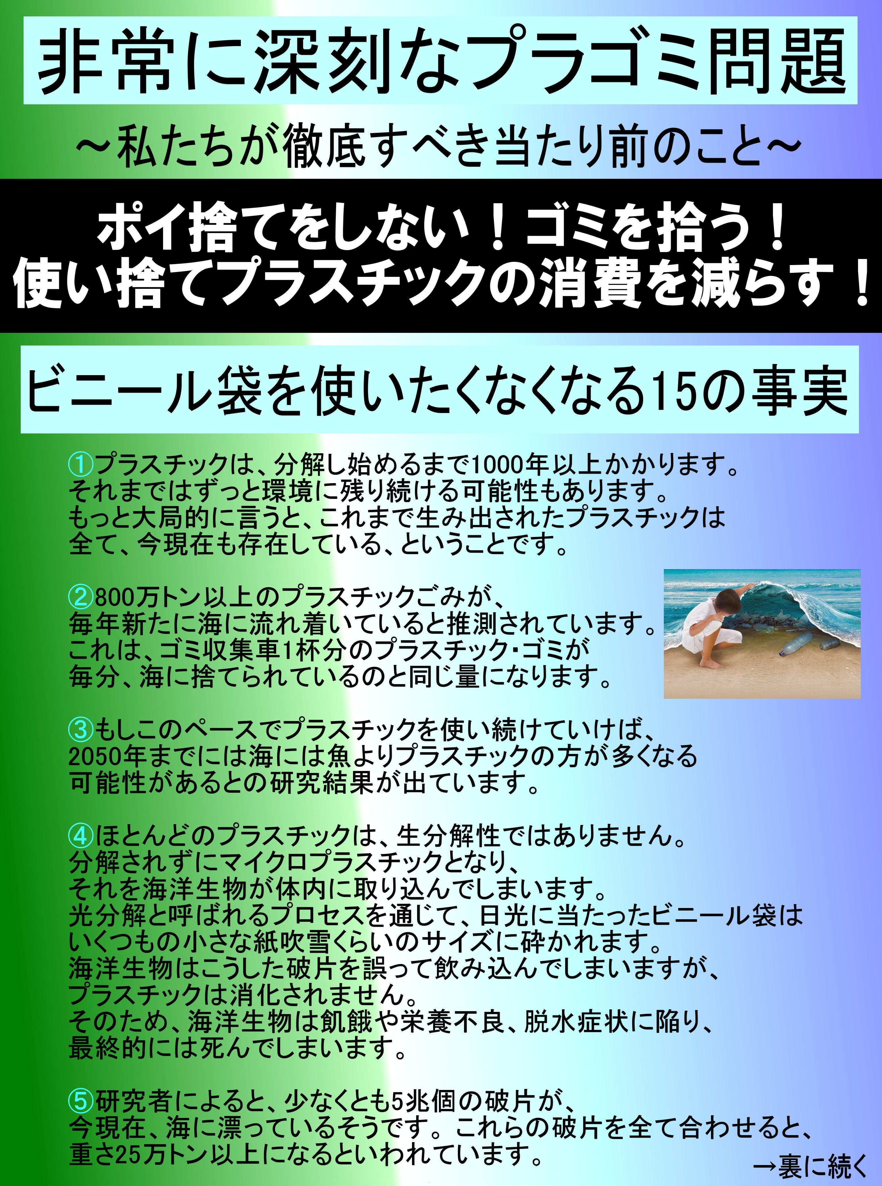 gomichirashi1b.jpg