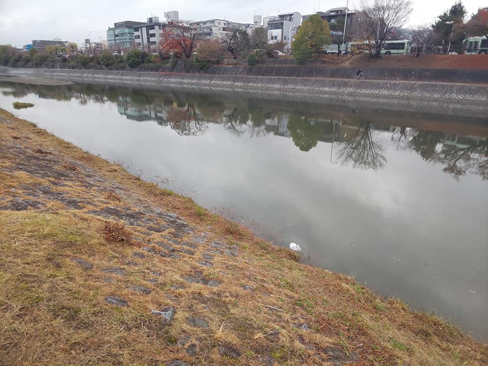 kamogawagomi12.jpg