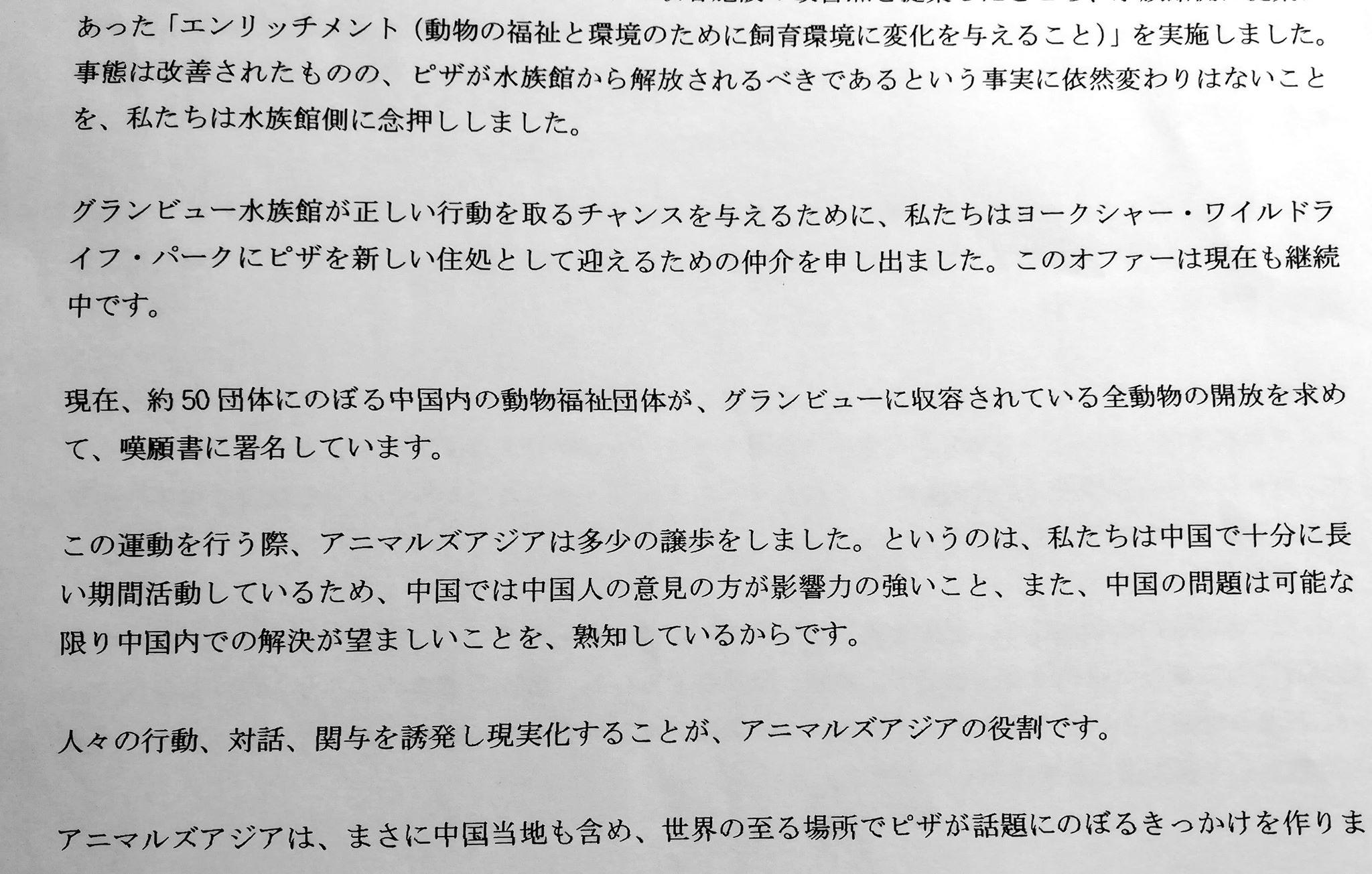 sirokumaAA2.jpg
