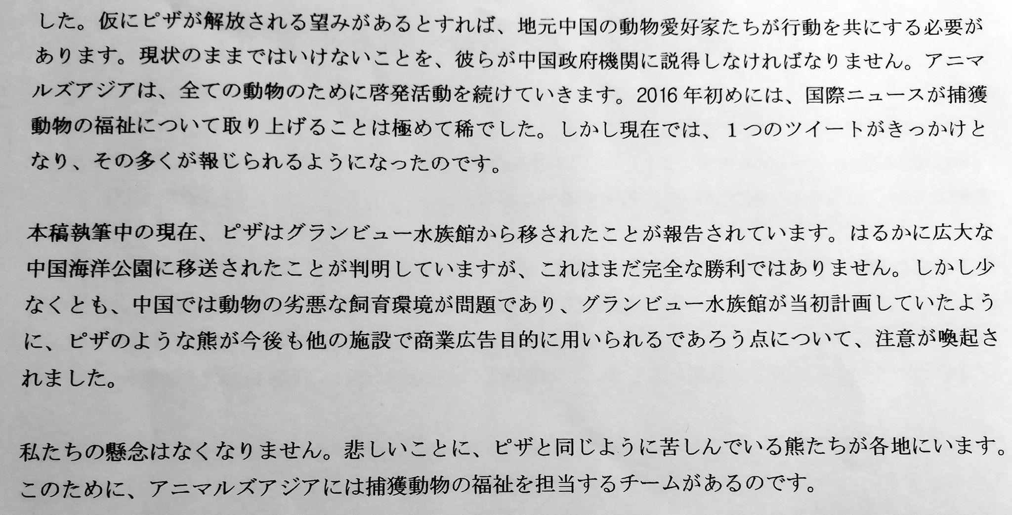 sirokumaAA3.jpg