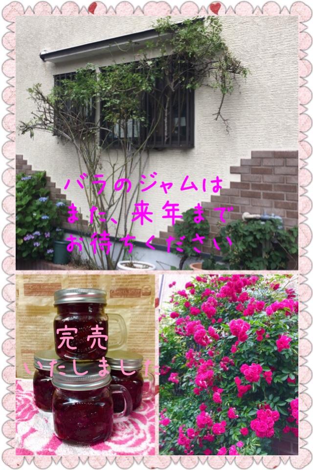 fc2blog_2019060921483080e.jpg