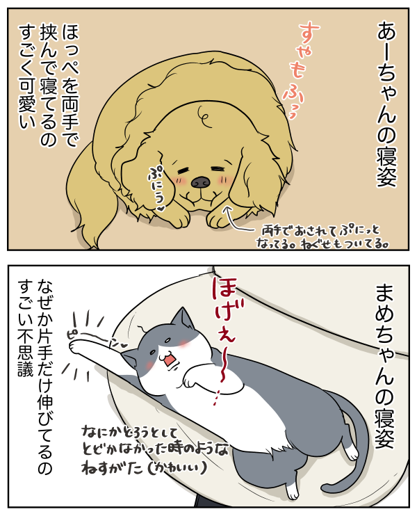 201906231857114a6.png