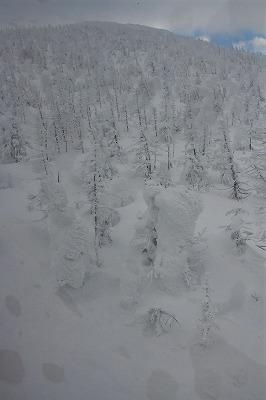 s-樹氷ナイトDSC_1523_01