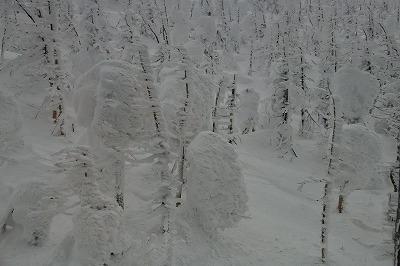 s-樹氷ナイトDSC_1533_01