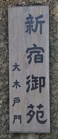 s-新宿御苑DSC_2040_01