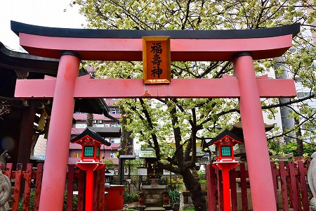 s-柳森神社DSC_2515_01