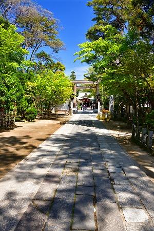s-久伊豆神社DSC_2774_01