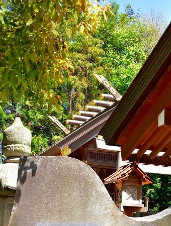 s-久伊豆神社DSC_2796_01