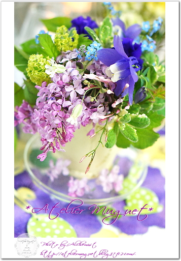 4-lilac.jpg