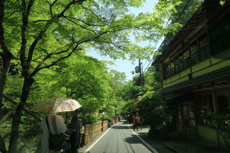 青葉京都1