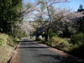 190420県道12号栗東信楽線に合流