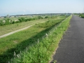 190601野洲川右岸は未舗装区間が長い