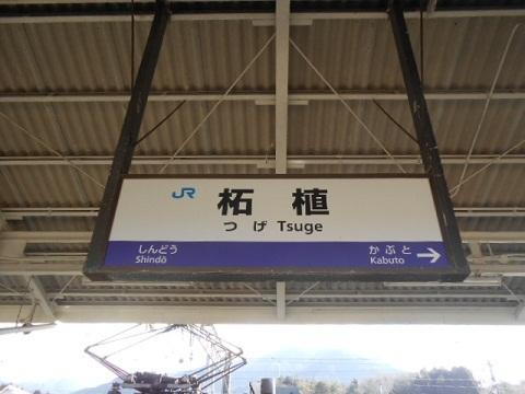jrw-tsuge-2.jpg