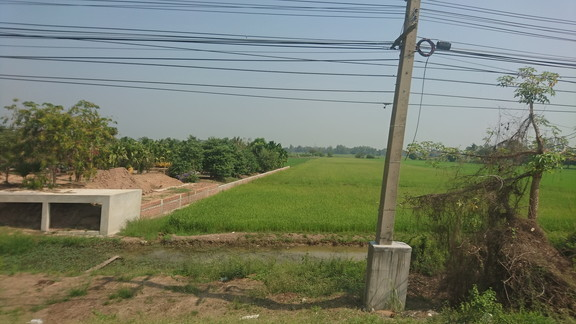 Take bus to Phitsanulok (4)