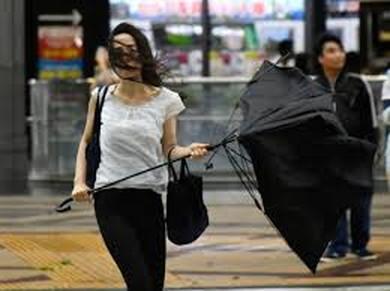 Broken umbrella (1)