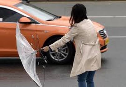 Broken umbrella (2)