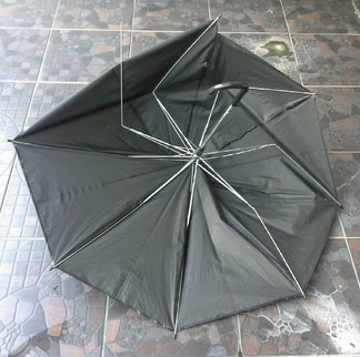 Broken umbrella (3)