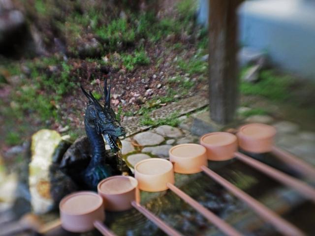 190324加茂神社7