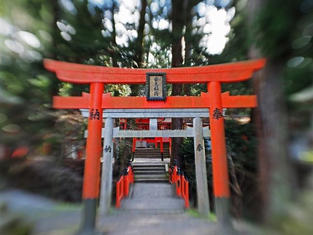 190324加茂神社8