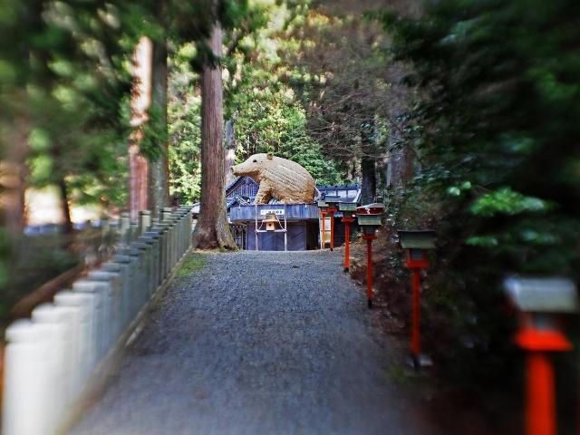 190324加茂神社9