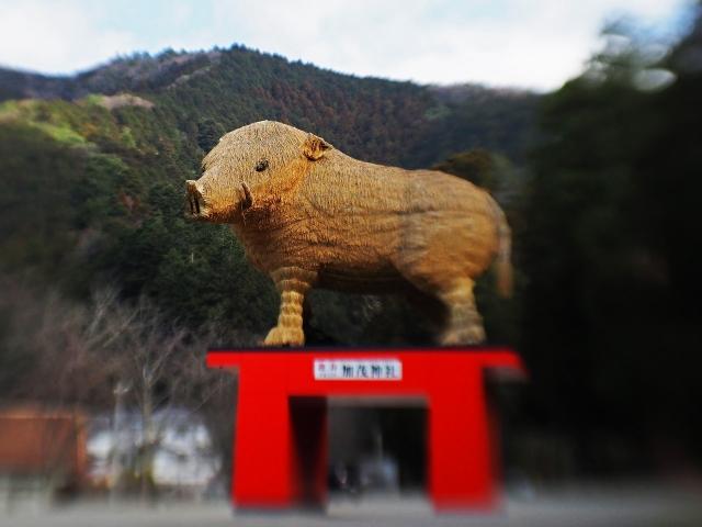 190324加茂神社10