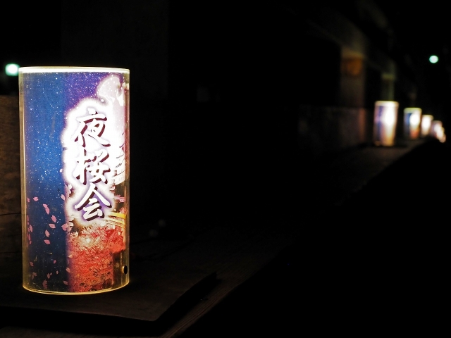 190405夜桜会11
