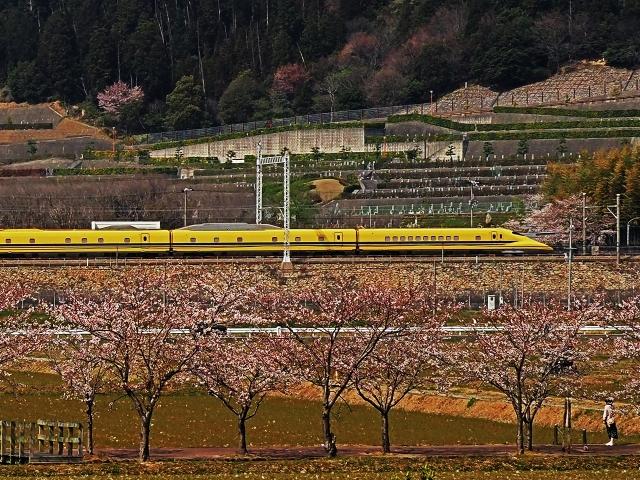 190406新幹線3