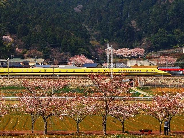 190406新幹線4