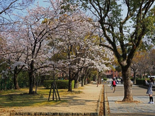 190406姫路城1